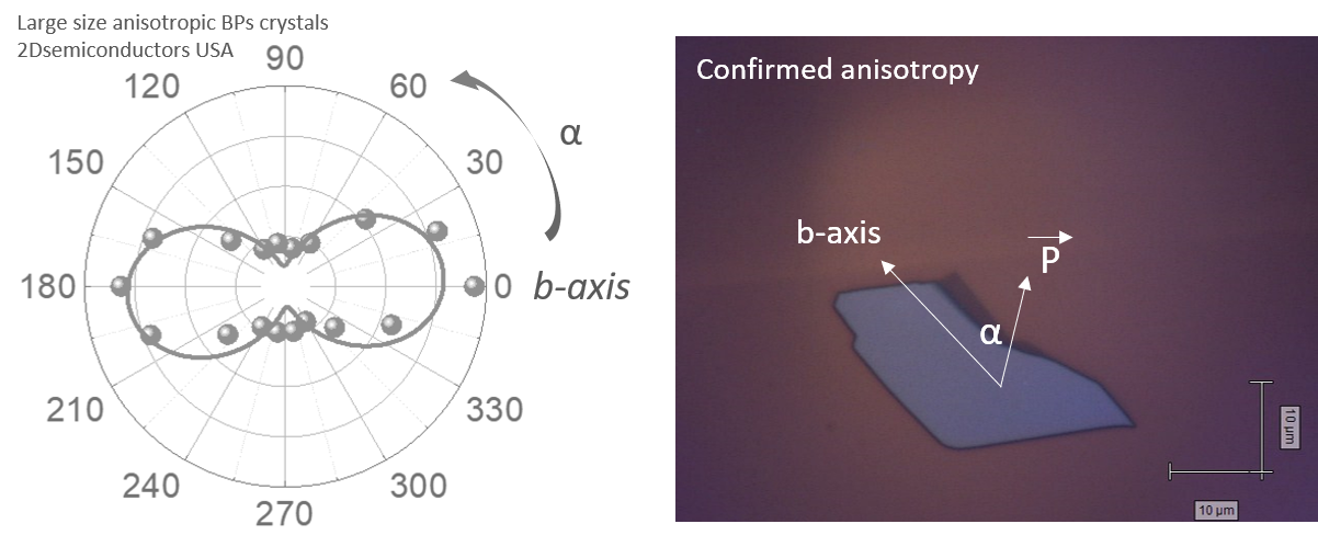 bps-anisotropy-in-raman.png