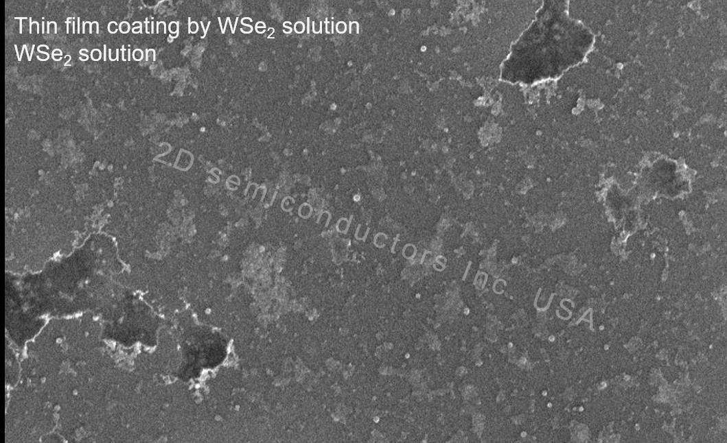 2D WSe2 solution SEM images film